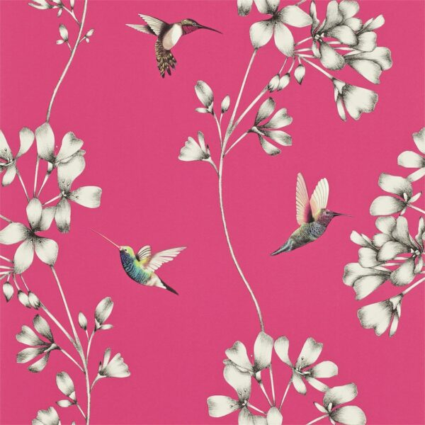 Harlequin Amazilia Wallpaper Flamingo