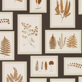 Sanderson Fern Gallery Charcoal-Spice 215713