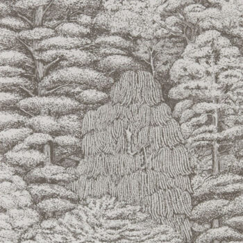 Sanderson Woodland Toile Ivory-Charcoal 215716